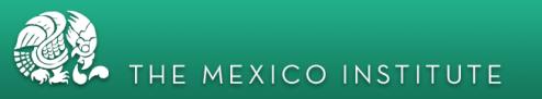 The Mexico Institute